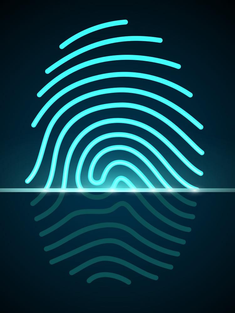 A biometria e o uso de dedos de silicone -  SISTEMA DESCOMPLICADO